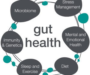 How Important Is Your Gut Health?
