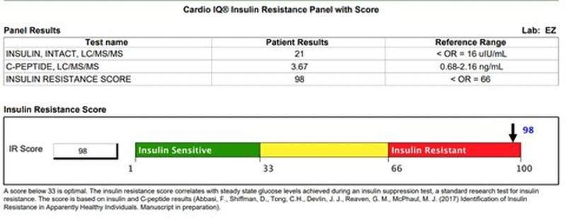 Insulin Resistance Panel