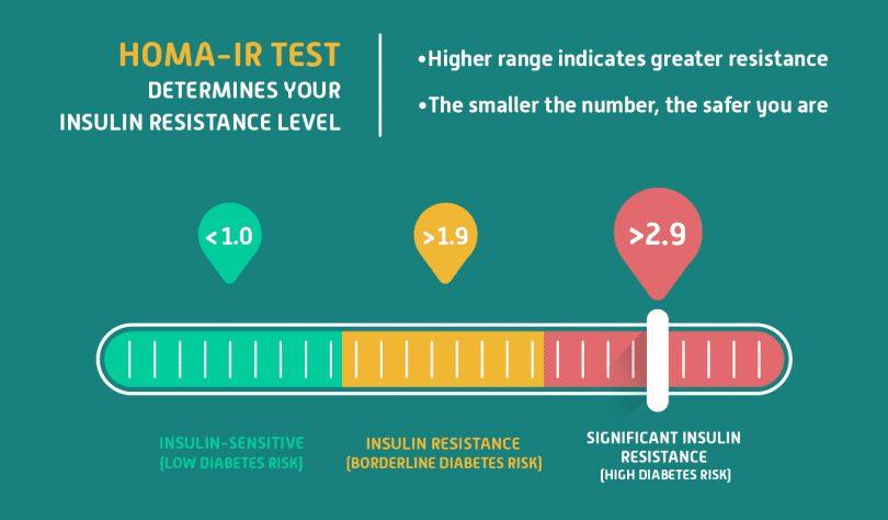 HOMA-IR Test Info